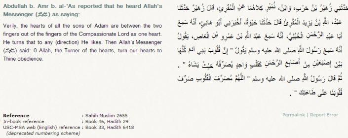 http://sunnah.com/muslim/46/29
