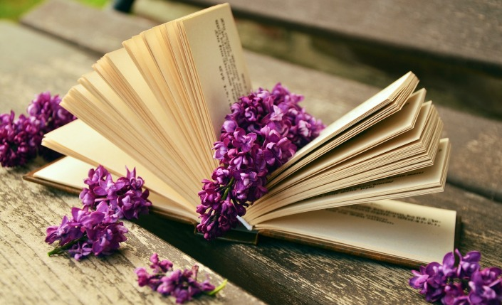 book-759873_1920.jpg